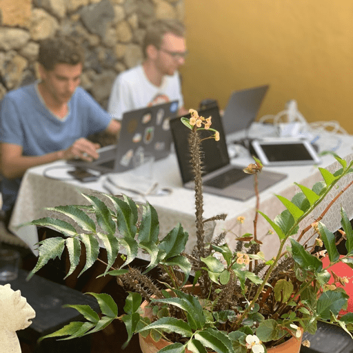 Teneriffa 2019: The last working week